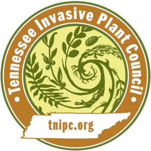 tnipcTRANSPARENT